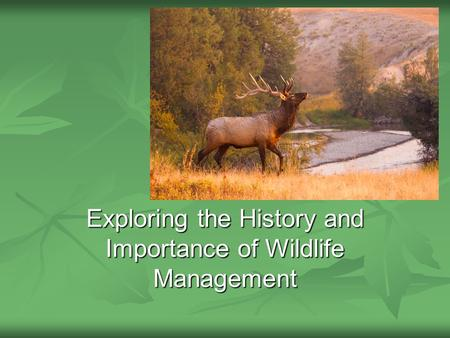 Exploring the History and Importance of Wildlife Management.
