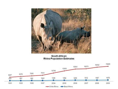 SA Rhino Poaching Incidents