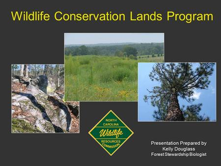 Wildlife Conservation Lands Program Presentation Prepared by Kelly Douglass Forest Stewardship Biologist.