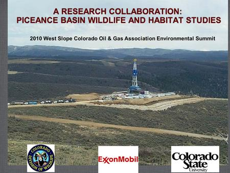 A RESEARCH COLLABORATION: PICEANCE BASIN WILDLIFE AND HABITAT STUDIES 2010 West Slope Colorado Oil & Gas Association Environmental Summit.