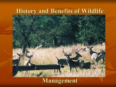 History and Benefits of Wildlife Management