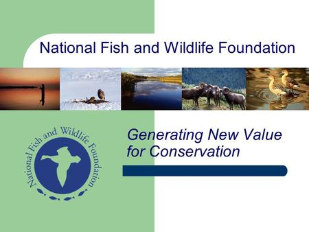 National Fish and Wildlife Foundation Generating New Value for Conservation.