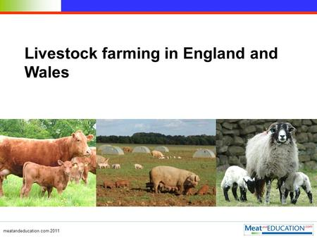 Meatandeducation.com 2011 Livestock farming in England and Wales.