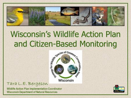 Wisconsin's Wildlife Action Plan and Citizen-Based Monitoring Tara L.E. Bergeson Wildlife Action Plan Implementation Coordinator Wisconsin Department of.