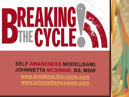 SELF AWARENESS MODEL(SAM) JOHNNETTA MCSWAIN, BS, MSW www.breaking-the-cycle.com www.johnnettamcswain.com.
