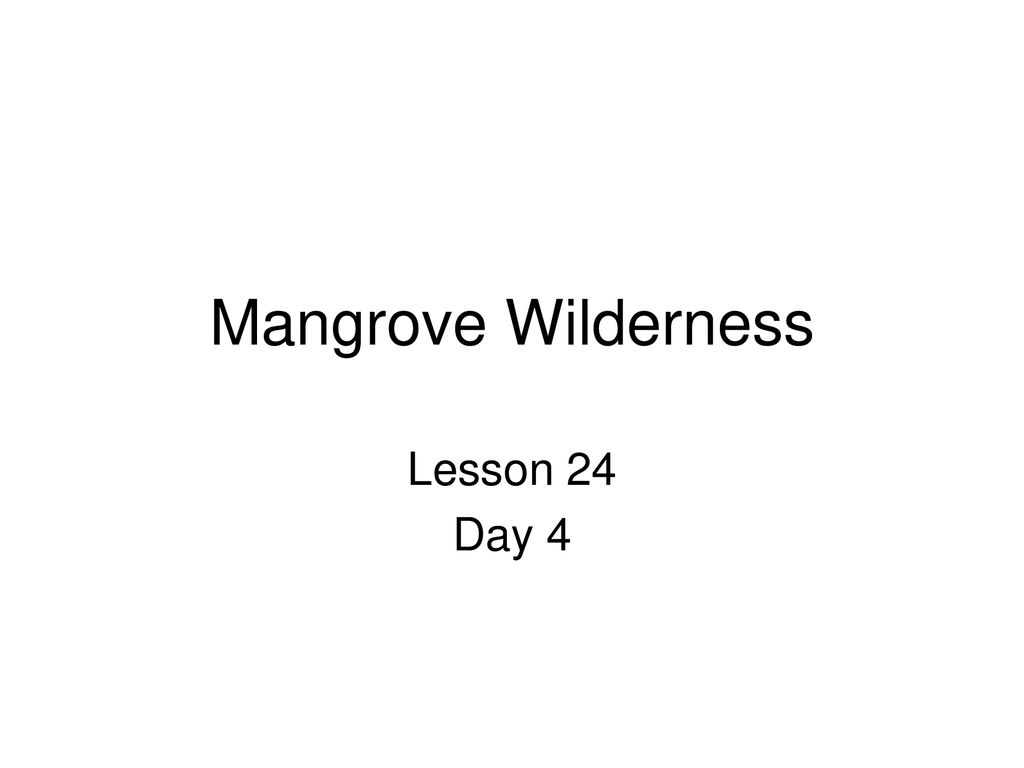 Mangrove Wilderness Lesson 12 Day ppt download