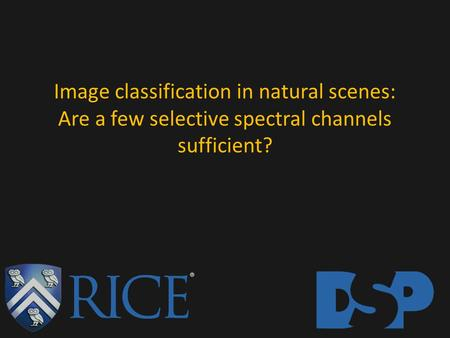 Image classification in natural scenes: Are a few selective spectral channels sufficient?