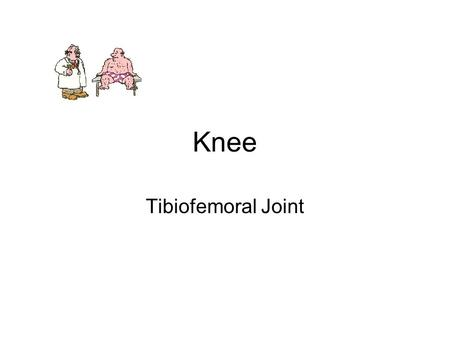 Knee Tibiofemoral Joint.