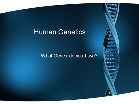 "Human Genetics What Genes do you have?. What is a trait? ""Your Mom gives you ½ of the instructions, your Dad gives you the other ½."" In science jargon:"