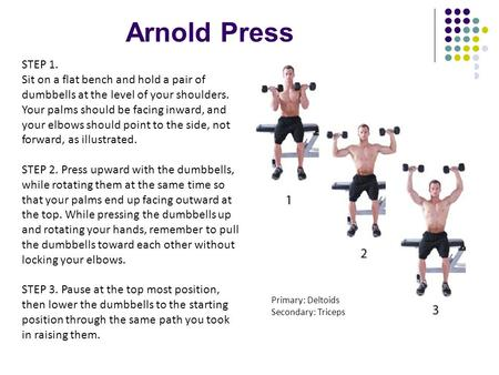 Arnold Press STEP 1. Sit on a flat bench and hold a pair of dumbbells at the level of your shoulders. Your palms should be facing inward, and your elbows.
