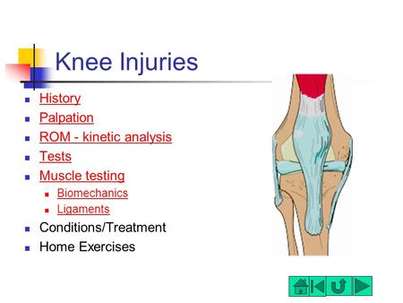 Knee Injuries History Palpation ROM - kinetic analysis Tests Muscle testing Biomechanics Ligaments Conditions/Treatment Home Exercises.