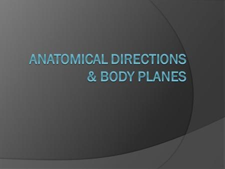 Anatomical Directions & Body Planes