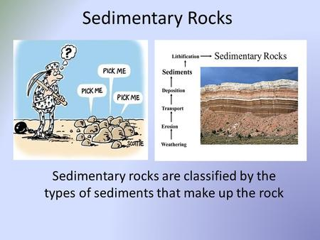 Sedimentary Rocks Sedimentary rocks are classified by the types of sediments that make up the rock.