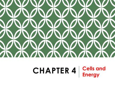 Chapter 4 Cells and Energy.
