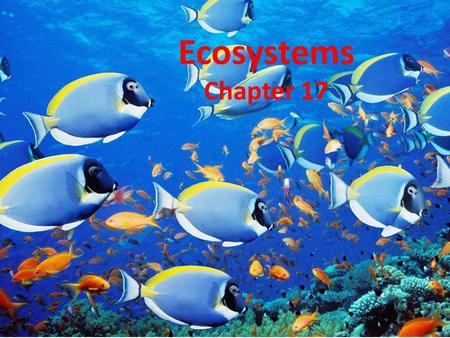 Ecosystems Chapter 17.