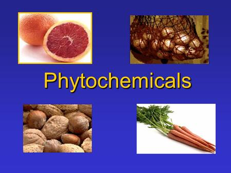 PhytochemicalsPhytochemicals.  Phyto = Plants  Phytochemical= Components in plants that may provide health benefits What Does Phytochemical Mean ?