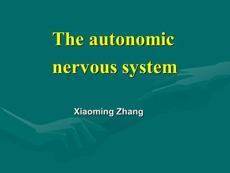 The autonomic nervous system The autonomic nervous system Xiaoming Zhang.