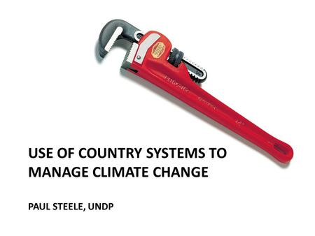 USE OF COUNTRY SYSTEMS TO MANAGE CLIMATE CHANGE PAUL STEELE, UNDP.