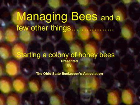 Managing Bees and a few other things…………….. Starting a colony of honey bees Presented By The Ohio State Beekeeper's Association.