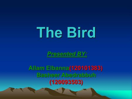 The Bird Presented BY: Allam Elbanna(120101383) Basheer Abedrabbuh (120093503) Presented BY: Allam Elbanna(120101383) Basheer Abedrabbuh (120093503)