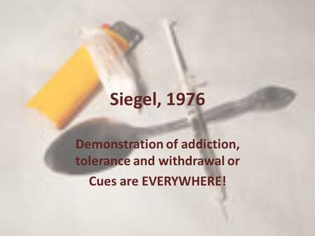 Siegel, 1976 Demonstration of addiction, tolerance and withdrawal or Cues are EVERYWHERE!
