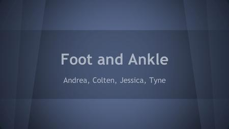 Foot and Ankle Andrea, Colten, Jessica, Tyne. Surface Anatomy.