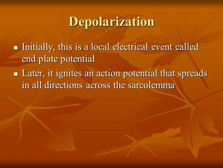 Depolarization Initially, this is a local electrical event called end plate potential Later, it ignites an action potential that spreads in all directions.