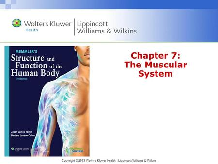 Copyright © 2013 Wolters Kluwer Health | Lippincott Williams & Wilkins Chapter 7: The Muscular System.