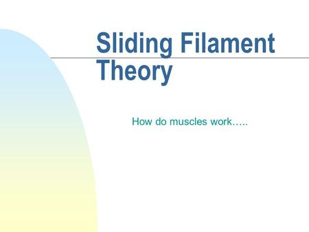 Sliding Filament Theory How do muscles work…... Muscle Cell Structure n Muscles are broken into smaller muscle fibers n muscle fibers are broken into.