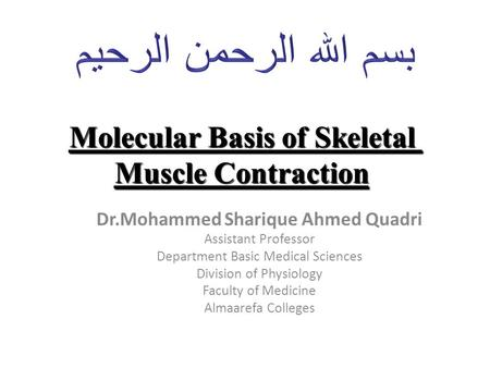Molecular Basis of Skeletal Muscle Contraction Dr.Mohammed Sharique Ahmed Quadri Assistant Professor Department Basic Medical Sciences Division of Physiology.