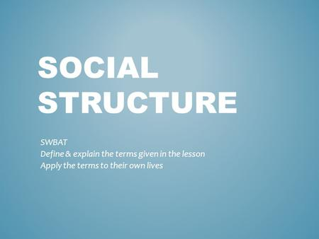 SOCIAL STRUCTURE SWBAT Define & explain the terms given in the lesson Apply the terms to their own lives.