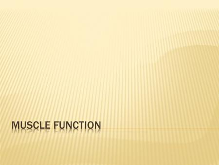 Muscle Function.