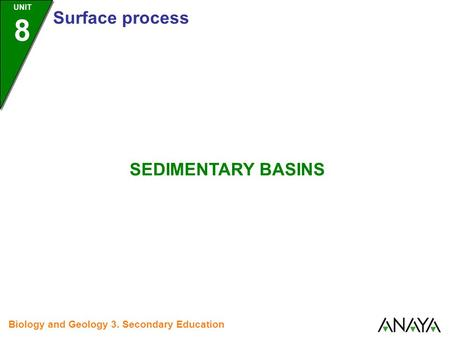 UNIT 8 Surface process Biology and Geology 3. Secondary Education SEDIMENTARY BASINS.