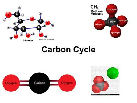 Carbon Cycle. Carbon Carbonic acid ( HCO 3 − ) Carbonate rocks (limestone and coral = CaCO 3 ) Deposits of Fossil fuels Carbon exists in the nonliving.
