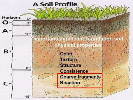 Important/significant foundation soil physical properties Color Texture Structure Consistence Coarse fragments Reaction.