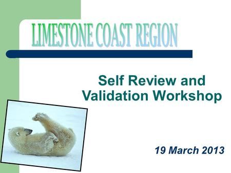 19 March 2013 Self Review and Validation Workshop.
