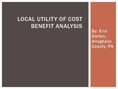 Local Utility of Cost Benefit Analysis