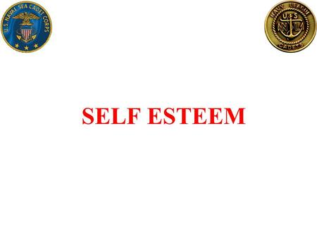 SELF ESTEEM. Self Esteem What is Self Esteem ? –Self esteem is the opinion you have of yourself. It is based on your attitude to the following: Your value.
