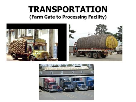 TRANSPORTATION (Farm Gate to Processing Facility).