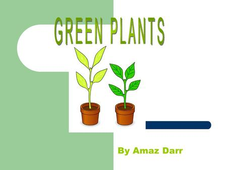 By Amaz Darr. L= Light Green plants need light to grow well. If they are grown in the dark, they do not get any light for photosynthesis, this reduces.