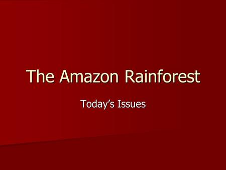 The Amazon Rainforest Today's Issues. Issues Diverse and rare plant and animal life vs. the industry of farming and timber Diverse and rare plant and.