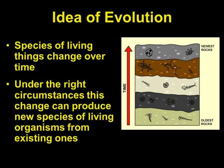 Idea of Evolution Species of living things change over time Under the right circumstances this change can produce new species of living organisms from.