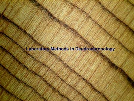 Laboratory Methods in Dendrochronology. Now, let's take our wood samples back to the laboratory:Now, let's take our wood samples back to the laboratory: