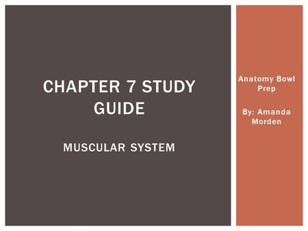 Anatomy Bowl Prep By: Amanda Morden CHAPTER 7 STUDY GUIDE MUSCULAR SYSTEM.