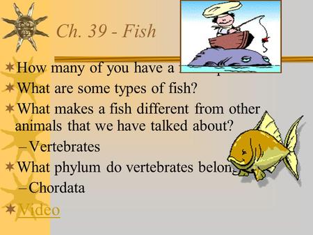 Ch. 39 - Fish  How many of you have a fish aquarium?  What are some types of fish?  What makes a fish different from other animals that we have talked.