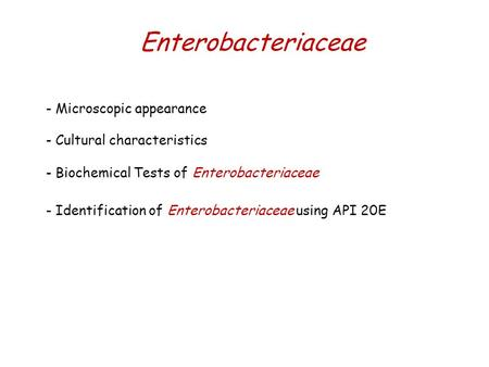 Enterobacteriaceae - Microscopic appearance - Cultural characteristics