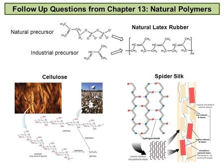 H h h h h h h h h c c c c c c c c follow up questions from chapter 13 natural polymers cellulose spider silk natural latex rubber natural ccuart Gallery