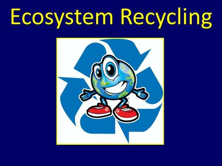 Ecosystem Recycling. Essential Standard 2.1 Analyze the interdependence of living organisms within their environments Clarifying Objective 2.1.1 Analyze.
