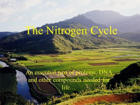The Nitrogen Cycle An essential part of proteins, DNA and other compounds needed for life…