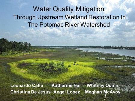 Water Quality Mitigation Through Upstream Wetland Restoration In The Potomac River Watershed Leonardo Calle Katherine He Whitney Quinn Christina De Jesus.